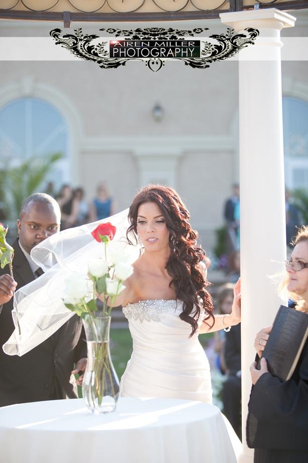 Aria_Prospect_Ct_Wedding_0049